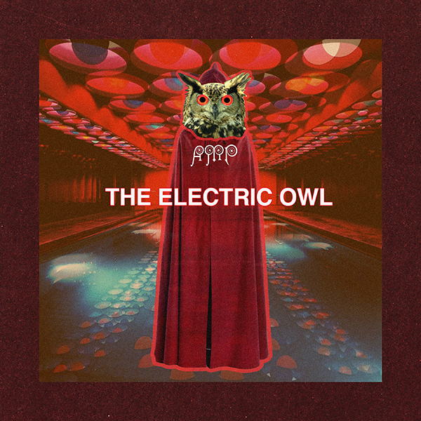 electric owl by austin meredith